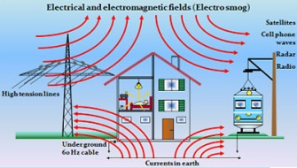 Place a room Harmonizer in all rooms with EMF sources to protect everyone in the house.