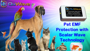 QuWave Pet Harmonizer for Happier, Healthier Pets. Pet EMF Protection