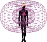 The Stress Blocker generates a Biofield Scalar Energy Field Schumann Resonance around your body